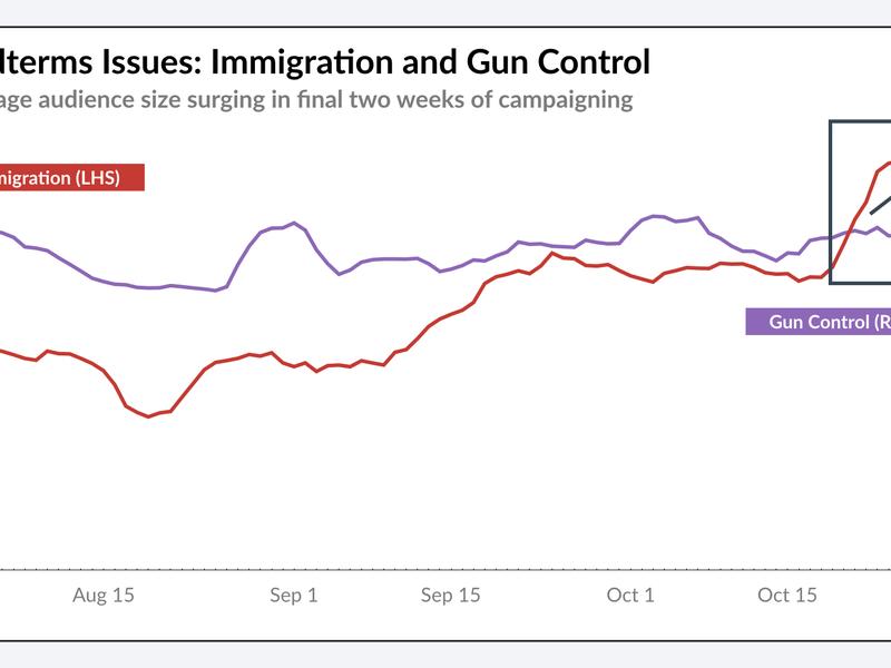Immigration/Gun Control